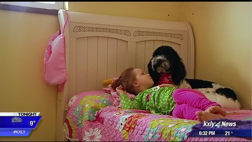 Dog brings hope, relief to little girl with liver disease