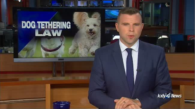 Dog tethering law goes into effect Sunday