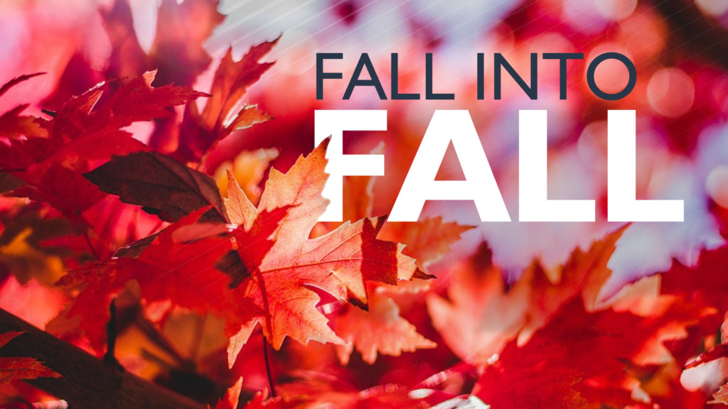 Fall into fall with these local festivals and festivities