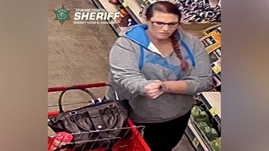 Person of interest wanted in identity theft, fraud case