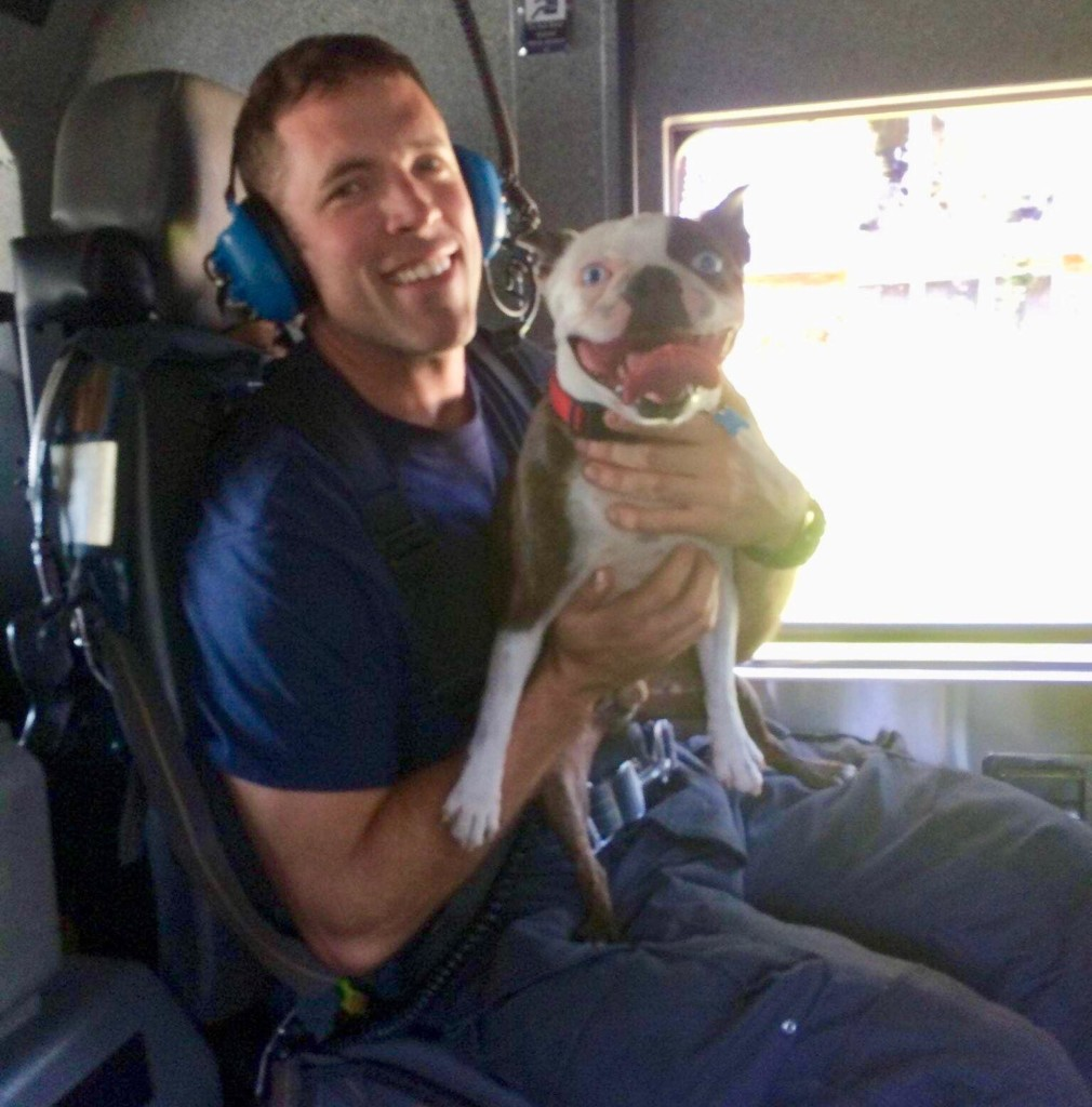 Firefighters put out kitchen fire then save lost dog that escaped during fire