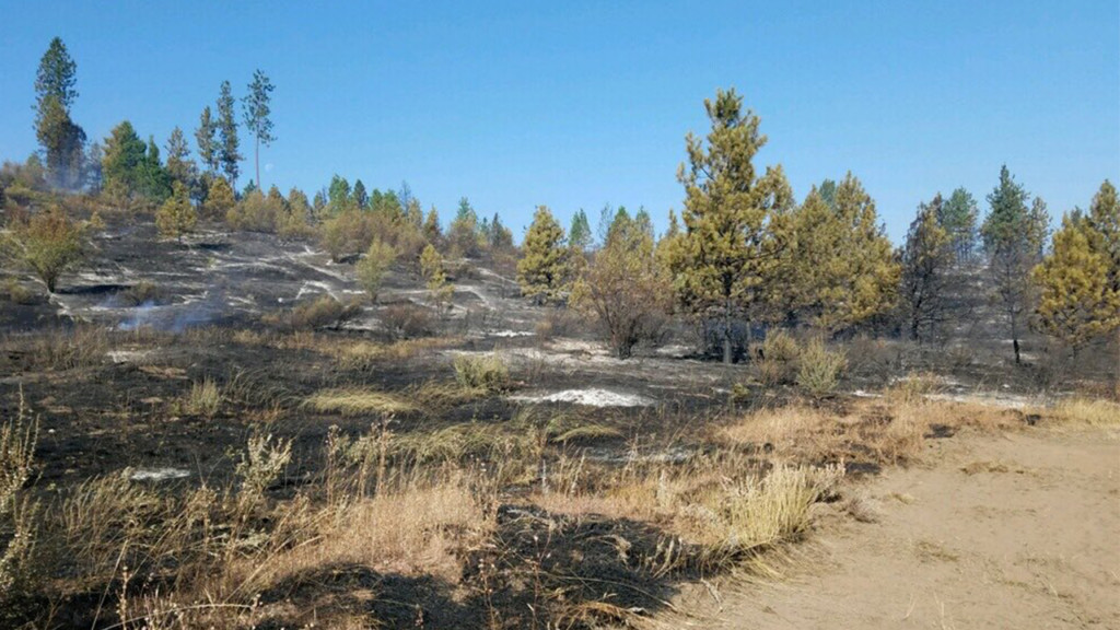 Evacuations lifted for Fisher 231 Fire burning north of Reardan