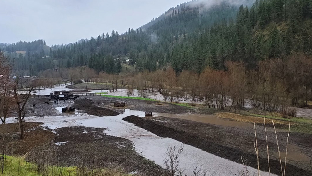 Flood outlook: Area creeks, streams expected to rise through Monday