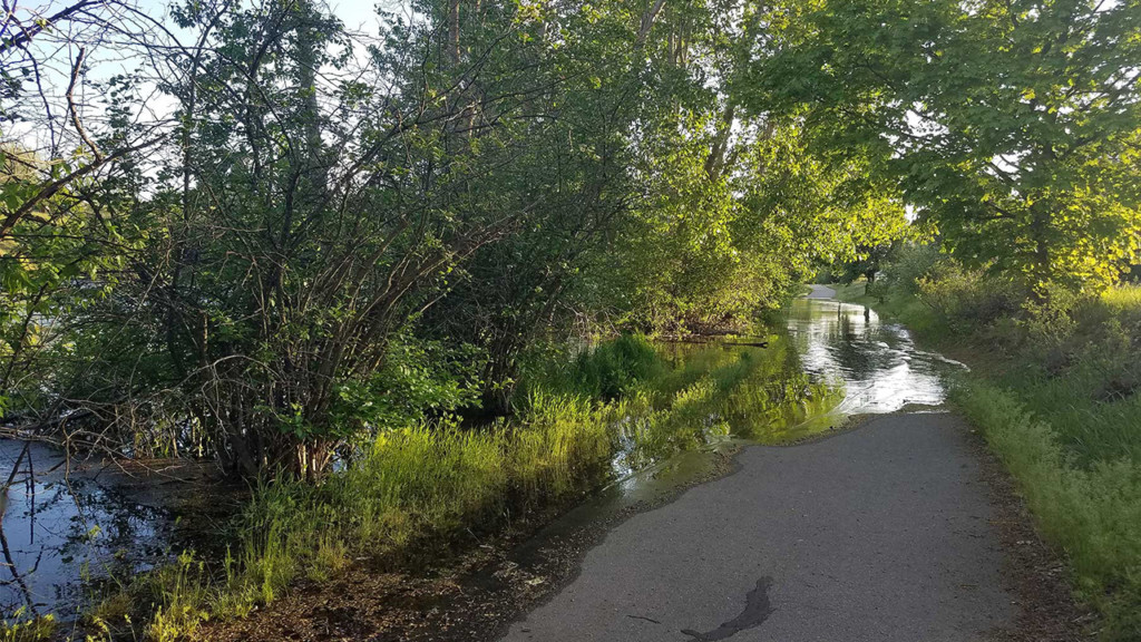 Sections of Centennial Trail flooded