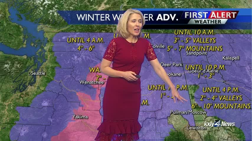 Forecast Focus for February 14