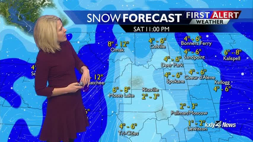 Forecast Focus for February 7
