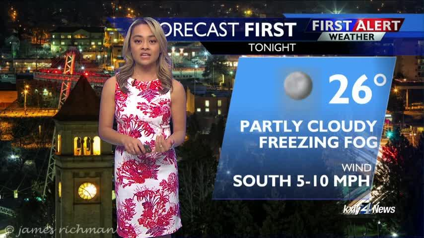 Forecast Focus for January 21