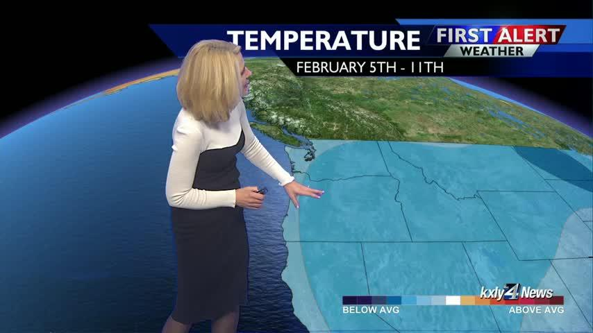 Forecast Focus for January 28