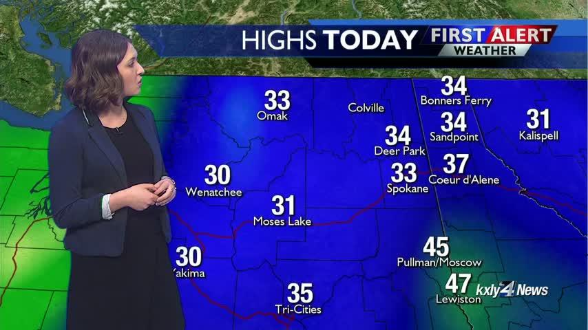 Forecast Focus for January 31,2019