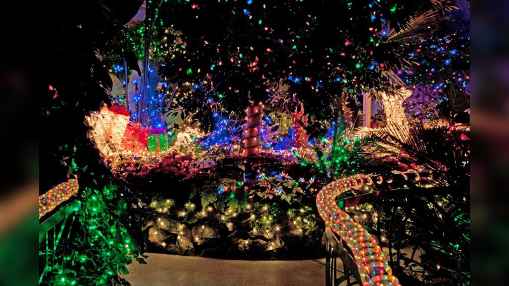 Gaiser Conservatory to light up for the holiday season