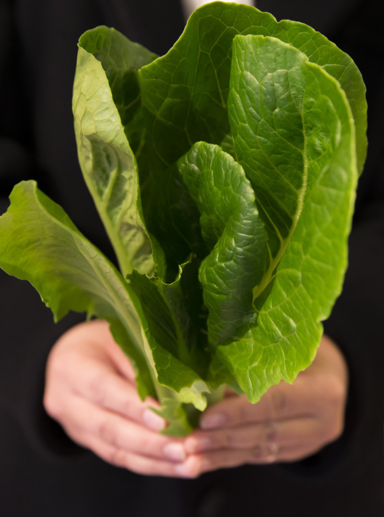 Ten Idahoans affected by E. coli outbreak linked to romaine lettuce