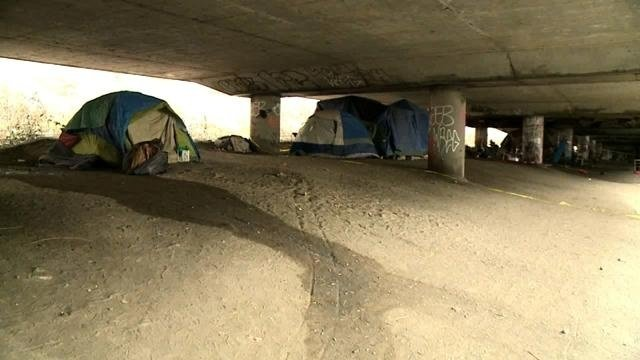 Olympia seeks private company to clean up homeless camps