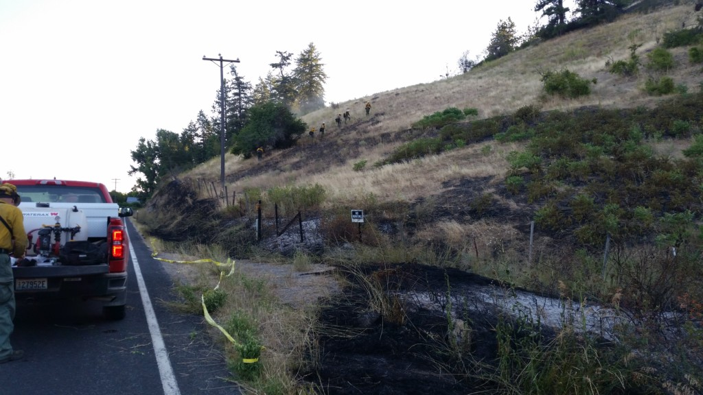 Stevens County Sheriff's Office, DNR investigating suspicious brush fires