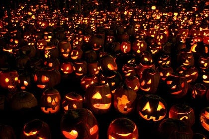 Help with world record attempt for Jack-O-Lanterns