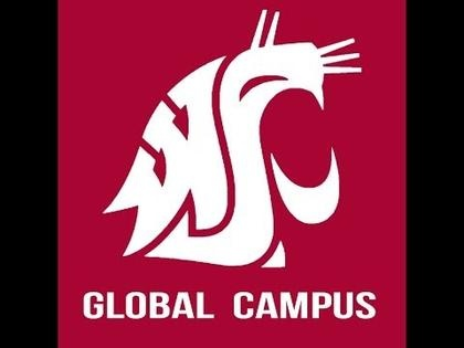 Seattle group names WSU Global Campus best in state