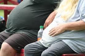 One in four Washingtonians is obese