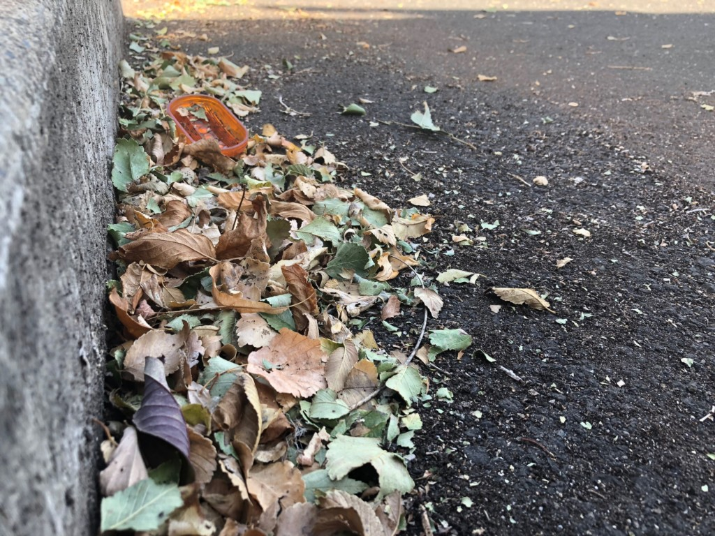 Volunteers needed for city cleanup