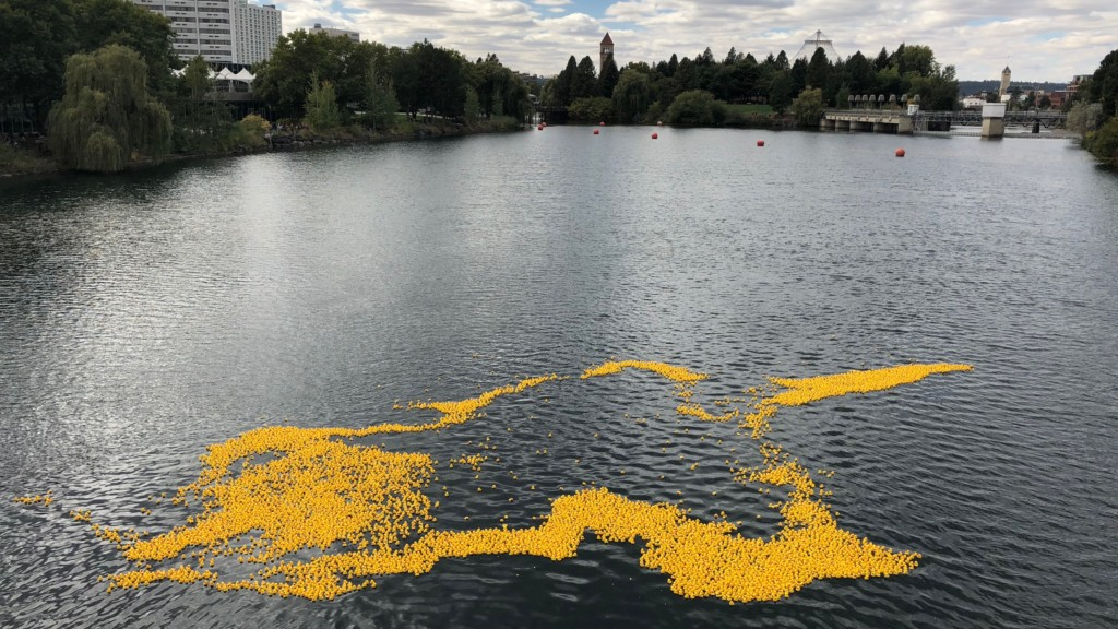Thousands of rubber ducks race the Spokane River for Shriners Hospital