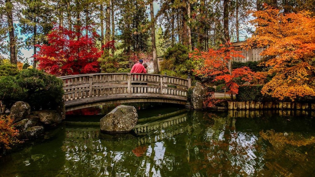 Manito Park's Japanese garden officially back open