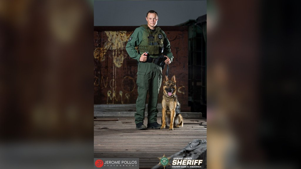 K9 deployed after traffic stop turns tense
