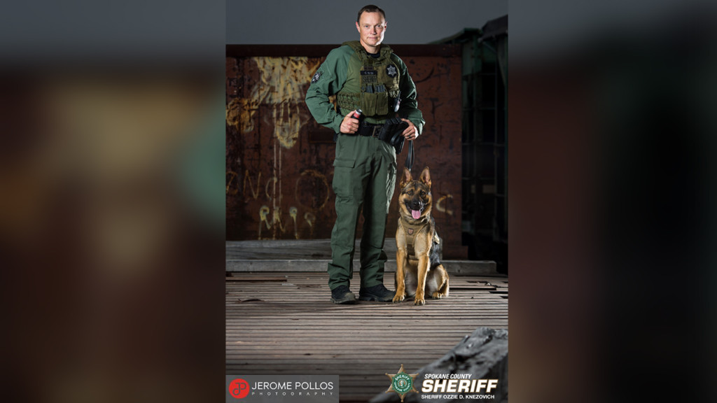 K9 Bane captures suspect who fled from stolen car