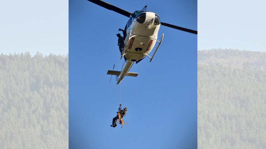 Spokane County K9s practice being hoisted from helicopters with their handlers