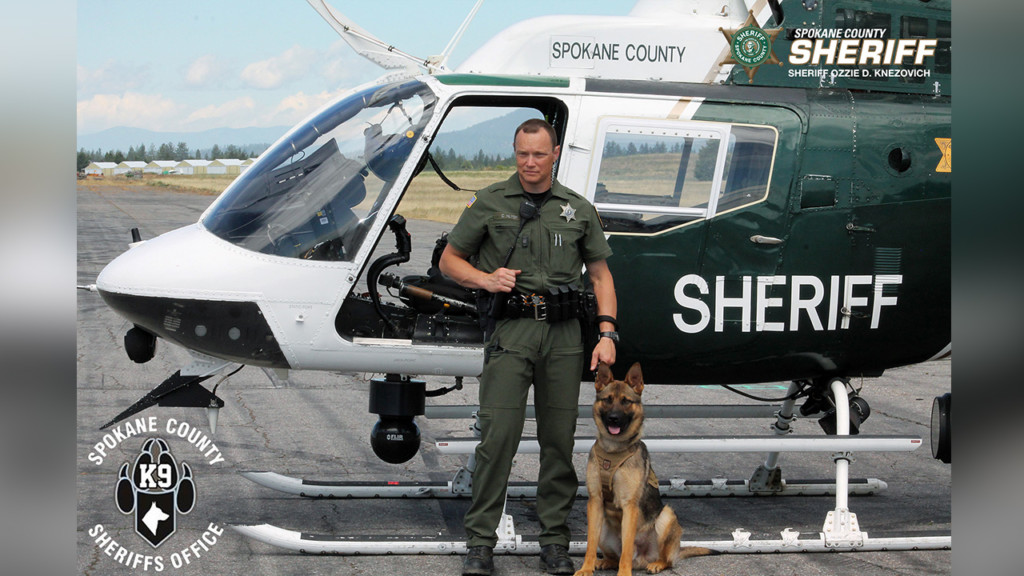Spokane Valley K9 unit arrests wanted felon