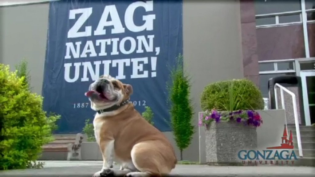 Jury sides with Gonzaga over owner of bulldog Maddie in discrimination lawsuit
