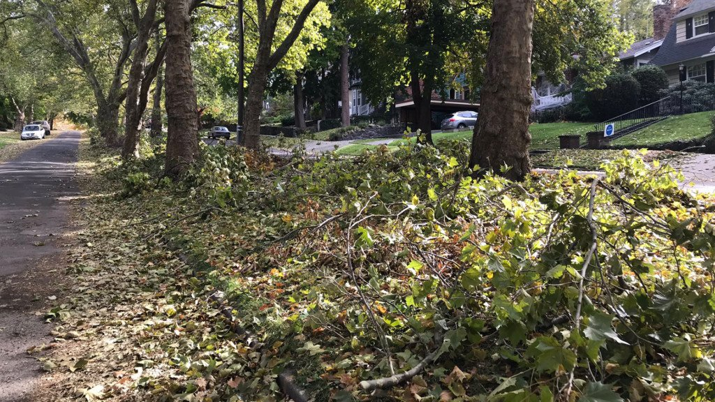 City of Spokane to finish cleaning up storm debris within the week