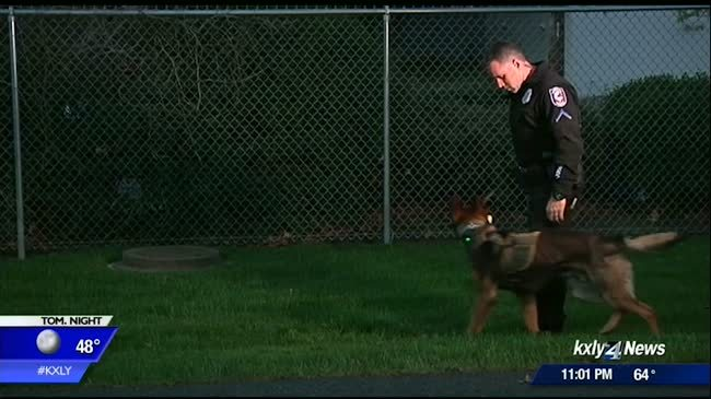 Memorial to honor fallen K9s