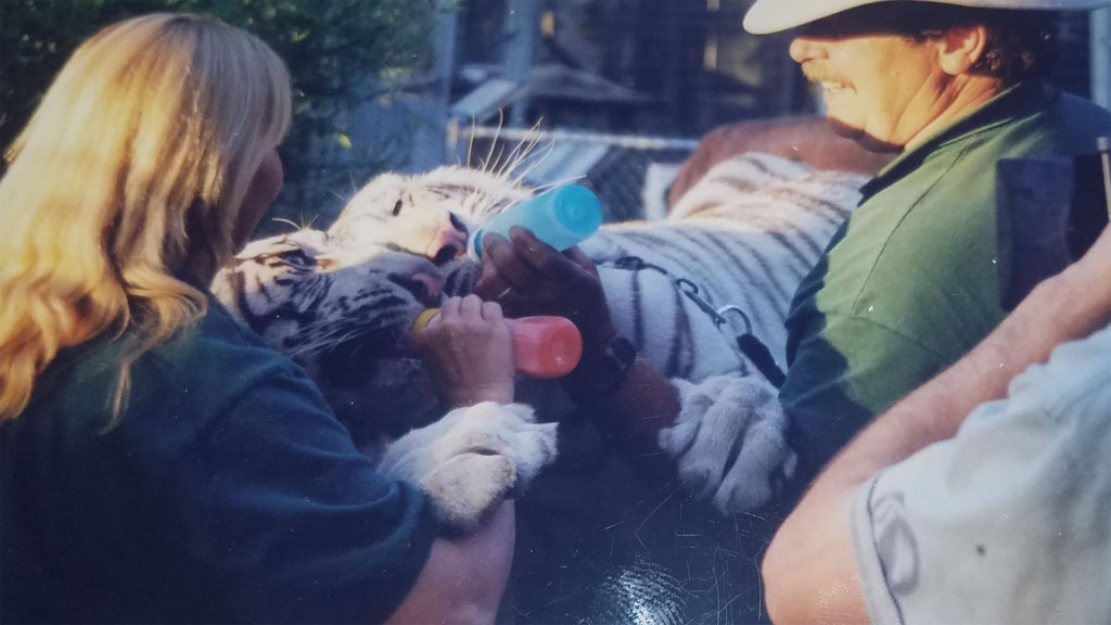 Cat Tales co-founder Mike Wyche passes away
