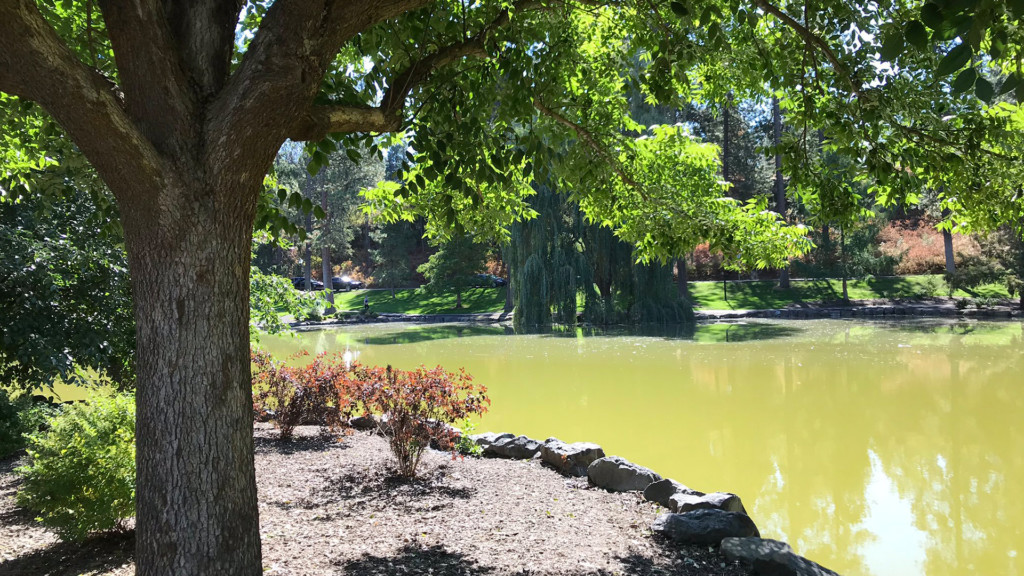 Manito Park's Mirror Pond is getting a makeover by spring 2020
