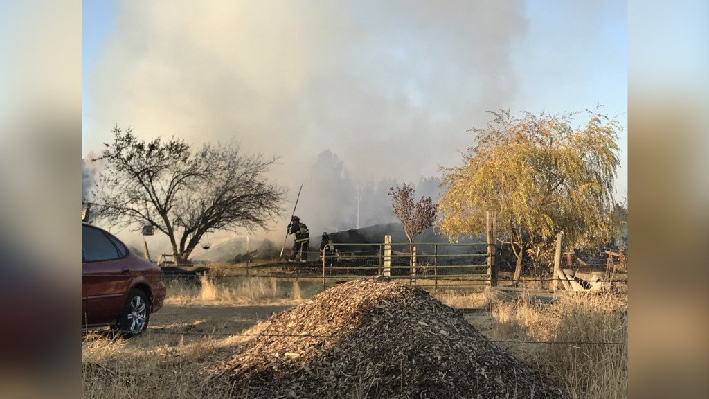 Fire destroys mobile home, kills two dogs