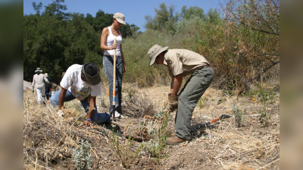 Forest Service waives fees, offers volunteer projects on National Public Lands Day