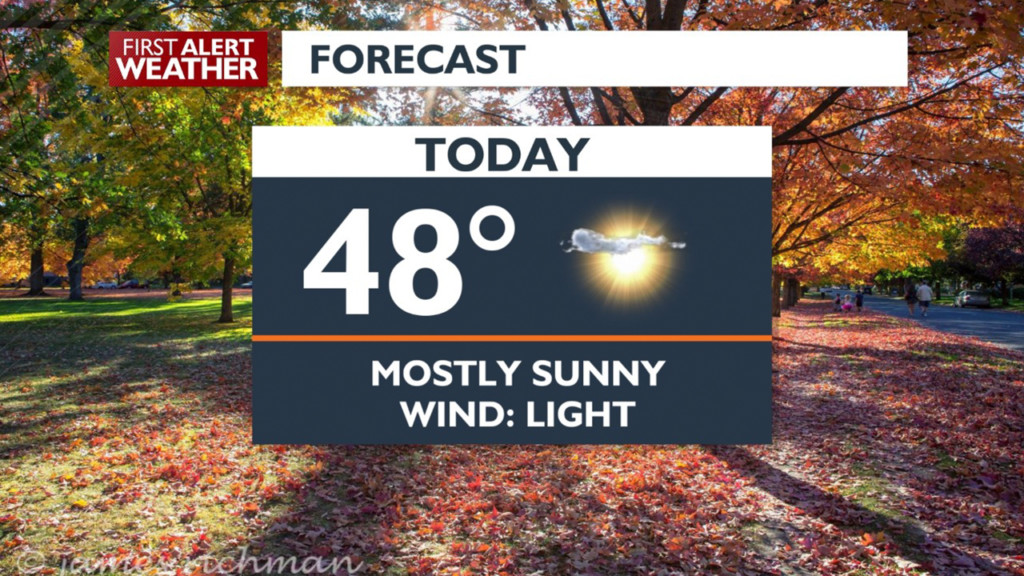 A perfect fall Saturday to get out and rake those leaves