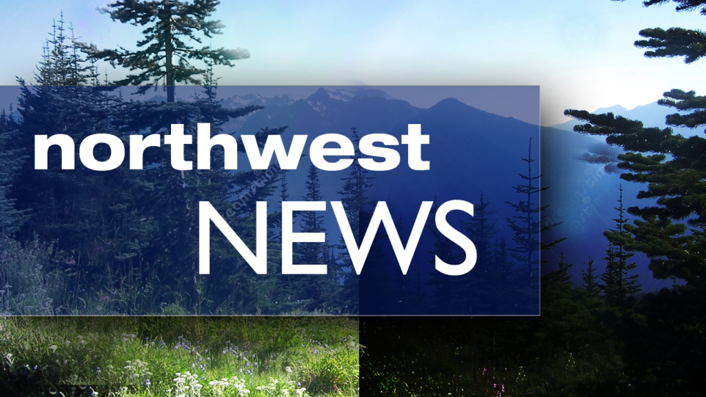 Bear attacks man in NW Montana