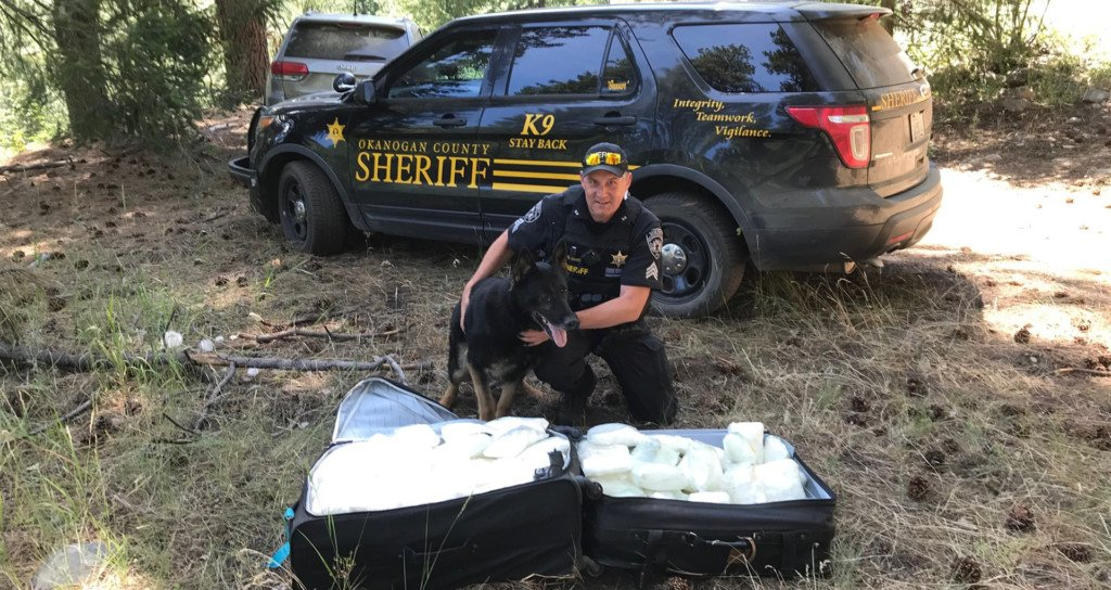 Authorities find one million dollars worth of meth in Okanogan National Forest