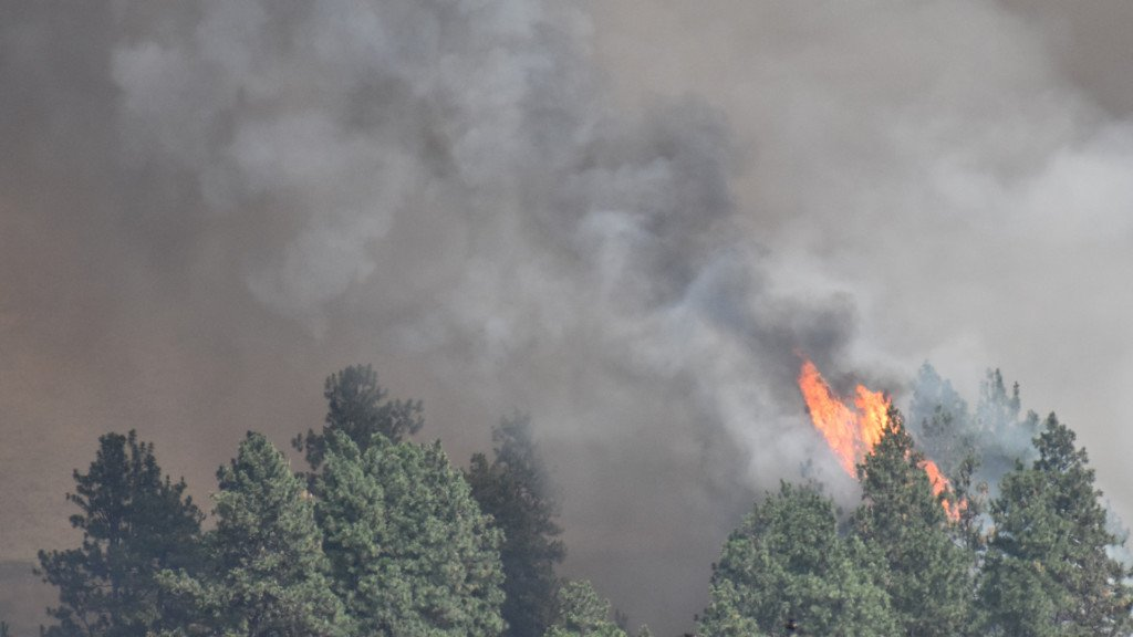 Oroville fire burns 350 acres, now in mop up stage