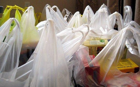 Lawmakers call for ban on plastic bags