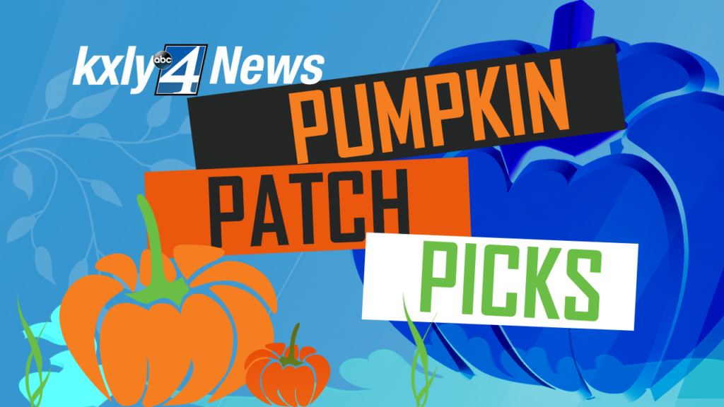 Your List: Best places for pumpkin picking in the Inland NW