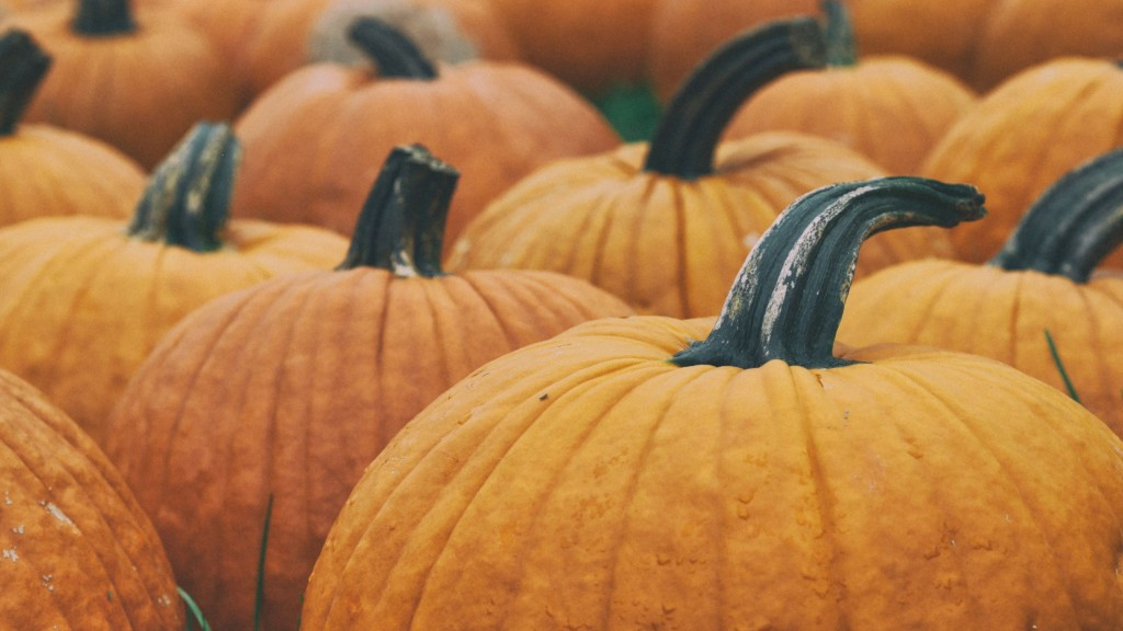 It's your last chance to visit Green Bluff for the Fall Harvest Festival
