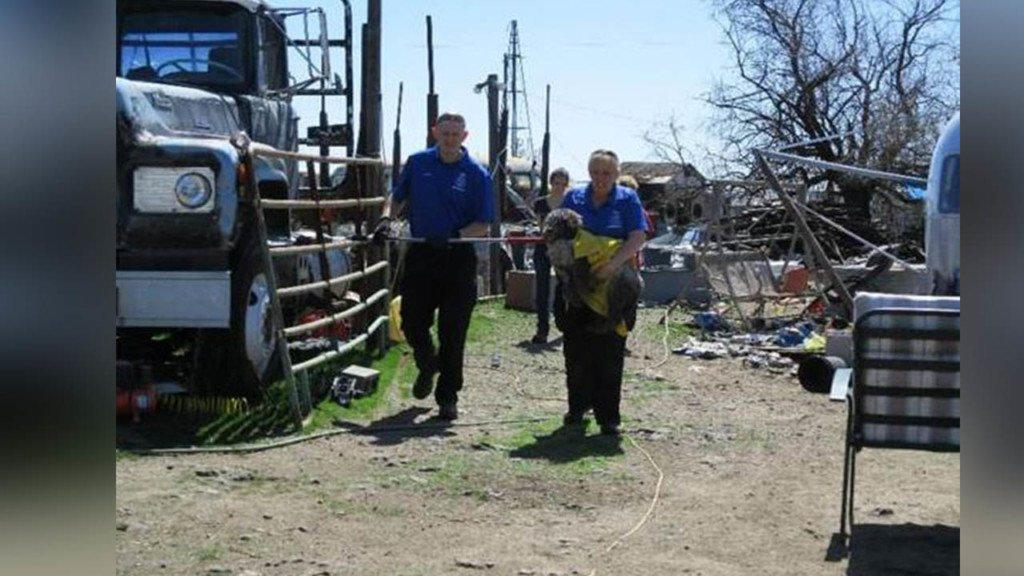 SCRAPSrescues 46 animals from puppy mill