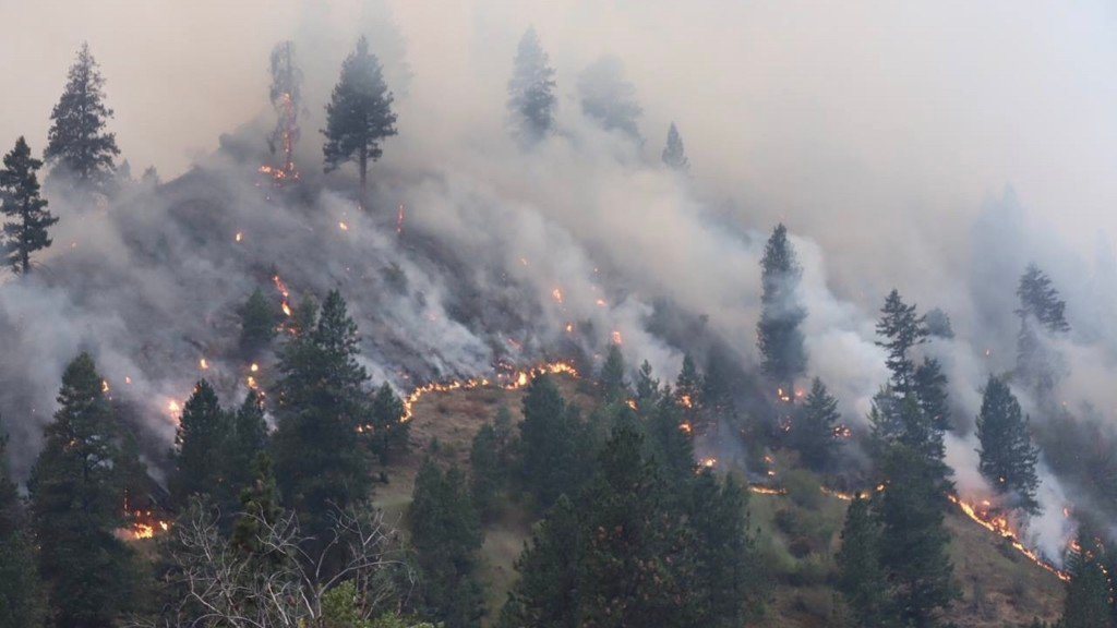 More firefighters called to fight Rattlesnake Creek Fire in Idaho