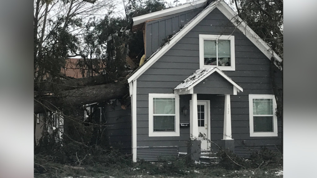 Gusty winds cause 100-foot tree to fall in Sandpoint, lands in a bedroom