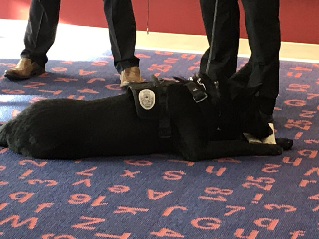 Providence adds first hospital-based K9 force in Washington State