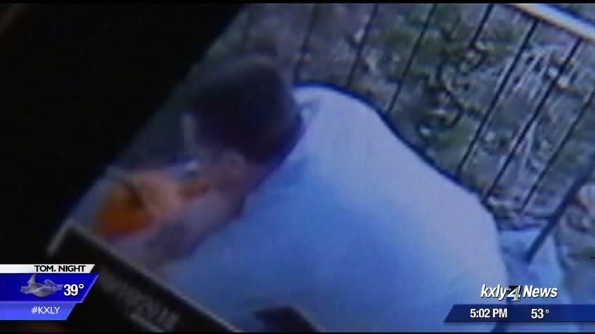 Security camera catches thief stealing packages from northeast Spokane home