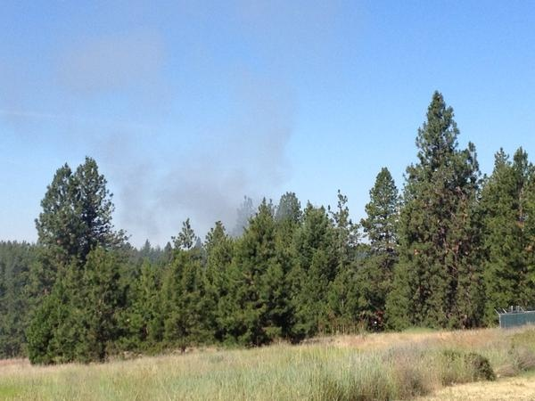 Crews contain South Hill brush fire