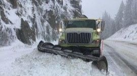 Up to 150 trees fall along Sherman Pass during weekend snowstorm