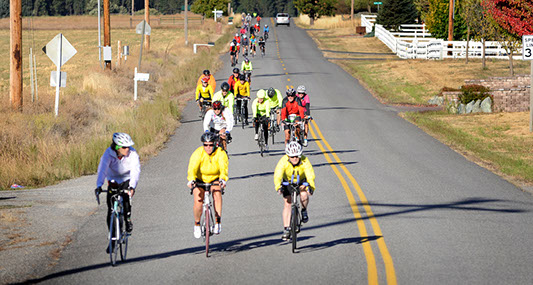 8th annual Rim Ride offers cyclists great views while helping local charities