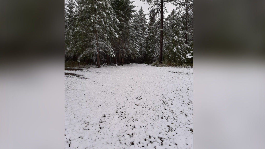 Winter storm warning in effect for mountain passes in northern Washington and Idaho
